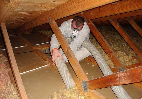 Best Way To Remove Old Insulation From Attic Home N