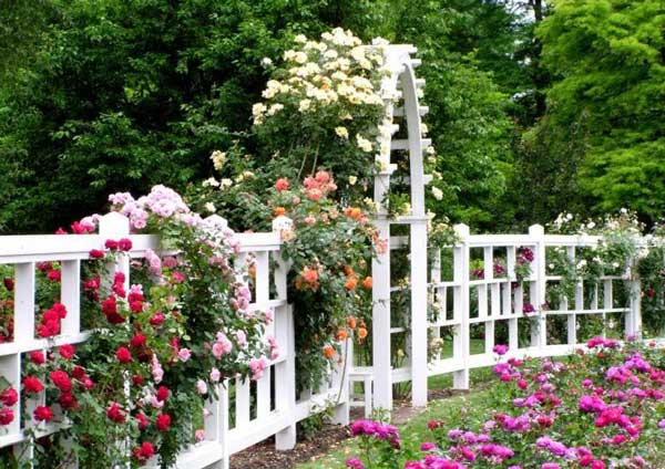 garden-arbor-with-flowers