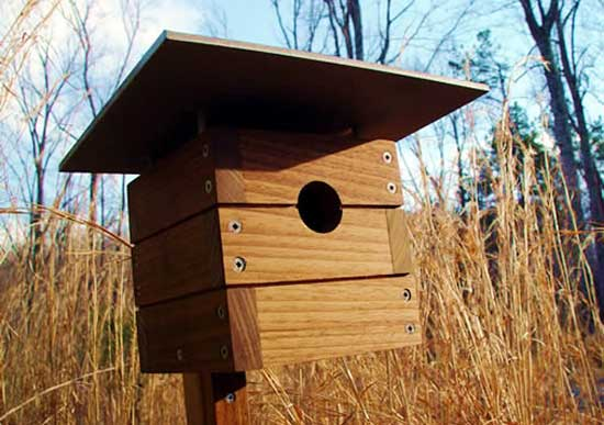 garden-bird-house