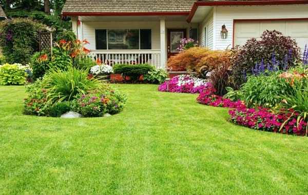manicured-lawn