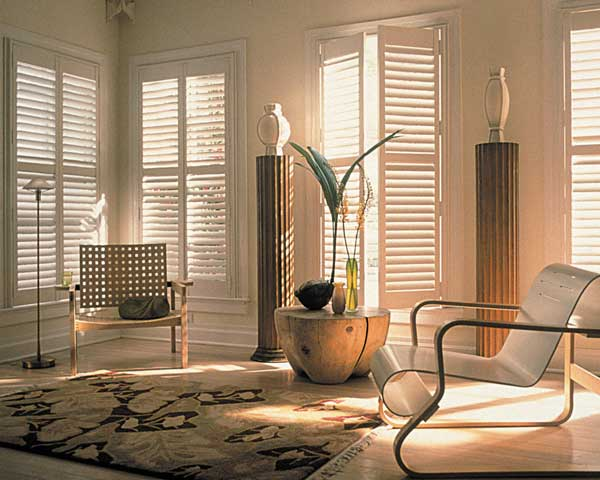 window-blinds-summer