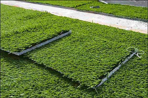 artificial-grass-turf